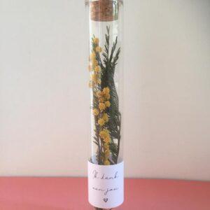 Glazen buisje | Mimosa